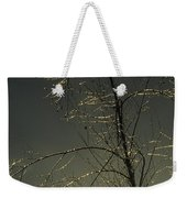 The Frozen Branches Of A Small Tree Weekender Tote Bag