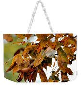 The Hickory In Autumn 2 Weekender Tote Bag