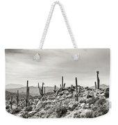 The High Desert  Weekender Tote Bag