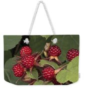 The Invasive Wine Berry And Shield Bugs Weekender Tote Bag