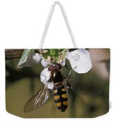 The Jewel Like Eyes, Transparent Wing Weekender Tote Bag