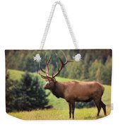 The King Of Winslow Hill Weekender Tote Bag