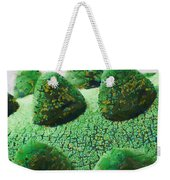 The Land Of Milk And Money Weekender Tote Bag