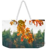 The Last Bit Of Fall Weekender Tote Bag