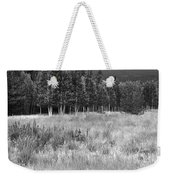 The Meadow Black And White Weekender Tote Bag