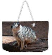 The Meercat  Weekender Tote Bag
