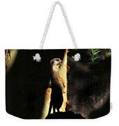 The Meerkats Perch Weekender Tote Bag