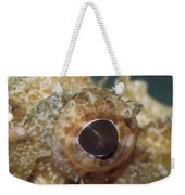 The Mosaic Eye Of The Venemous Weekender Tote Bag
