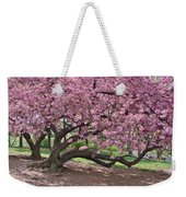 The Most Beautiful Cherry Tree Weekender Tote Bag