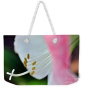 The Naked Lady - Hippeastrum Weekender Tote Bag