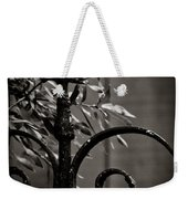 The Point Weekender Tote Bag by Jessica Brawley