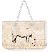 The Pony Weekender Tote Bag