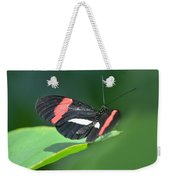 The Postman Takes Flight Weekender Tote Bag