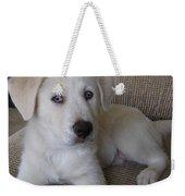 The Puppy Weekender Tote Bag