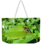 The Rednecked Bug On The Leaf Weekender Tote Bag