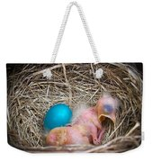 The Shimmering Blue Egg Weekender Tote Bag