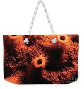 The Sponge Weekender Tote Bag
