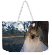 The Staring Eye Of A Clydesdale Horse Weekender Tote Bag