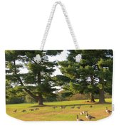 The Sunny Stroll Weekender Tote Bag by Sonali Gangane