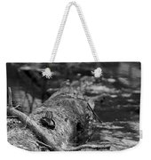 There Is A Frog On The Log Weekender Tote Bag