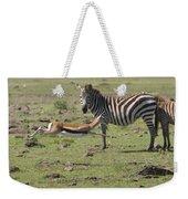 Thomson's Gazelle Running At Full Speed Weekender Tote Bag
