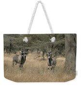 Three Beisa Oryxes In Kenyas Samburu Weekender Tote Bag