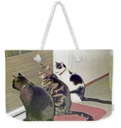 Three Cats Looking Out Into The Forest Weekender Tote Bag