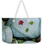 Three Fallen Leaves Lie On A Rock Weekender Tote Bag