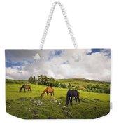 Three Horses Grazing In Field Weekender Tote Bag