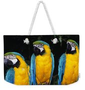 Three Parrots Weekender Tote Bag