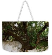 Through The Wall Weekender Tote Bag