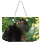 Tibetan Macaque Nursing Baby Weekender Tote Bag