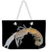 Tidepool Ghost Shrimp Weekender Tote Bag