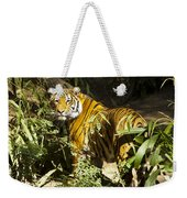 Tiger In The Rough Weekender Tote Bag
