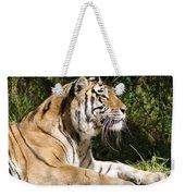Tiger Observations Weekender Tote Bag