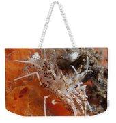 Tiger Shrimp On Orange Sponge, Bali Weekender Tote Bag