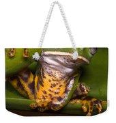 Tiger-stripe Monkey Frog Weekender Tote Bag