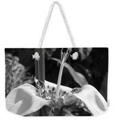 Tigridia Pavonia Or Mexican Shell Flower Weekender Tote Bag