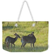 Time To Be On Your Own Son 5981 Weekender Tote Bag