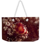 Tiny Cowrie Shell On Dendronephtya Soft Weekender Tote Bag