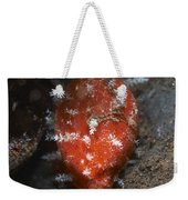 Tiny Red Yellow And White Cowrie Weekender Tote Bag