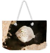 Tiny White Filefish With Small Black Weekender Tote Bag