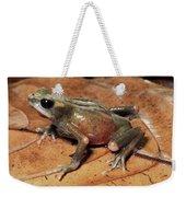 Toad Atelopus Senex On A Leaf Weekender Tote Bag
