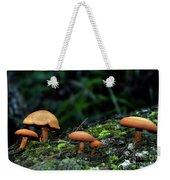 Toadstool Village Weekender Tote Bag by Kaye Menner