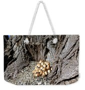 Toadstools In The Gravel Weekender Tote Bag by Will Borden