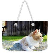 Toby Old Mill Cat Weekender Tote Bag by Sandi OReilly