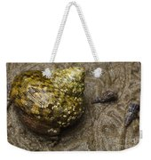 Top Shell Clanculus Sp Weekender Tote Bag