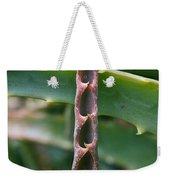Torch Aloe Symmetry Weekender Tote Bag