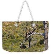 Torry Pines Sentinal Weekender Tote Bag
