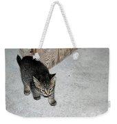 Tough Barn Kitten Weekender Tote Bag